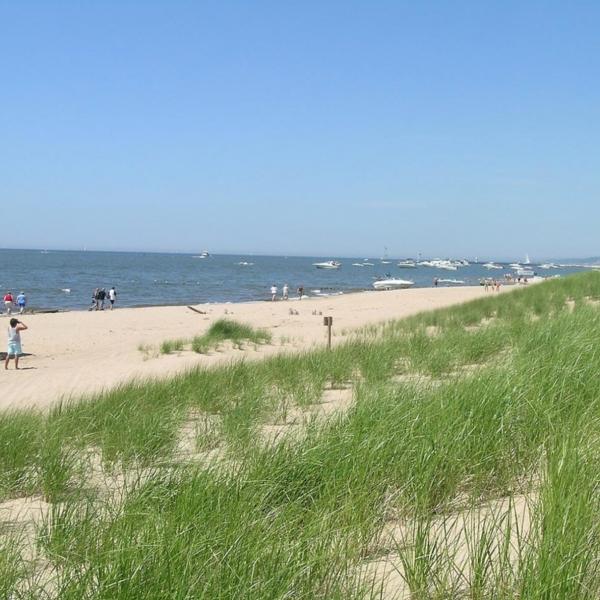 Southwest Michigan Beaches